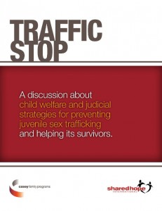 Traffic Stop-cover